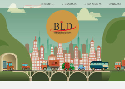 BLD Integral Solutions