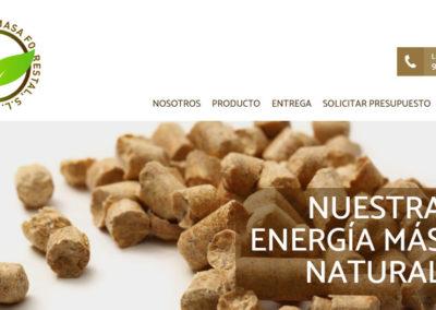 Gestión de la Biomasa Forestal