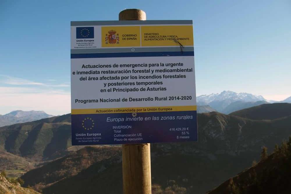 Actuaciones de restauración forestal en el oriente de Asturias