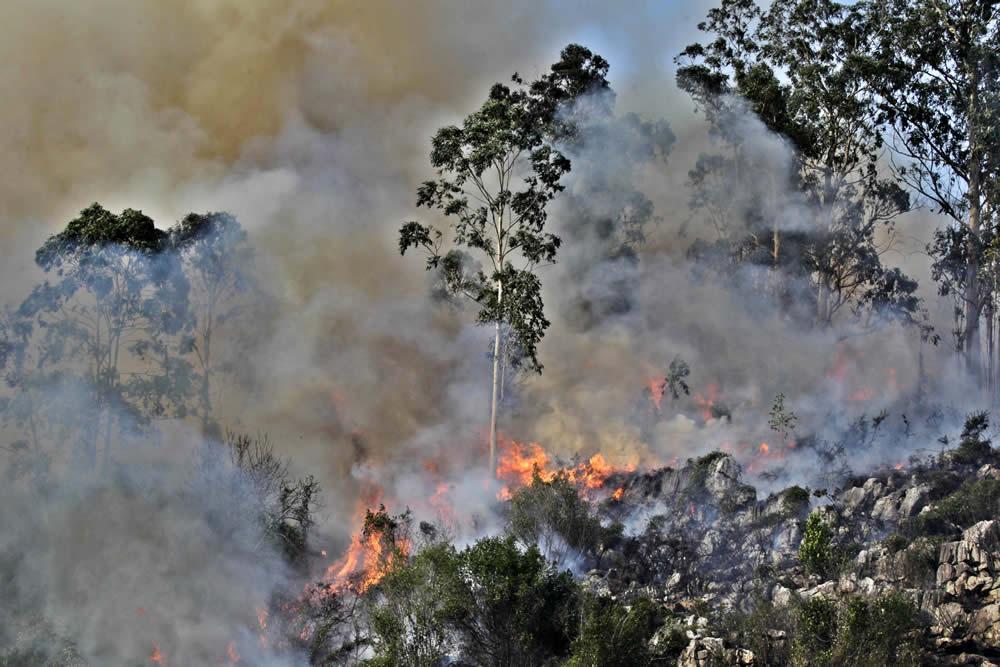 El fuego en Soto de Ribera